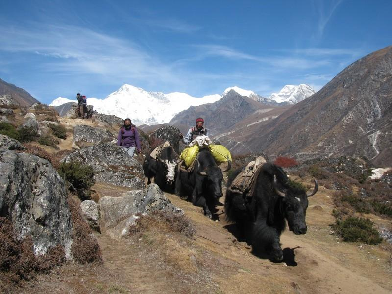 Trekking am Mount Everest